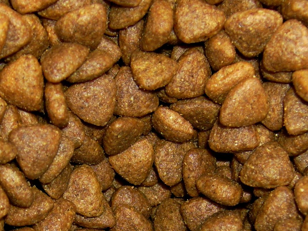 Homemade Dry Puppy Food Recipes