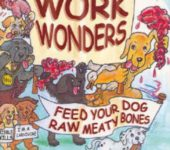 Boek Work Wonders Tom Lonsdale