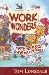 Boek Work Wonders Tom Lonsdale