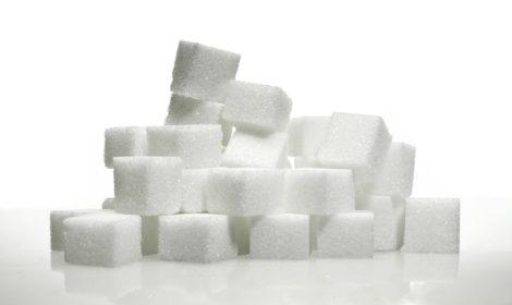 Suiker in hondenbrokken